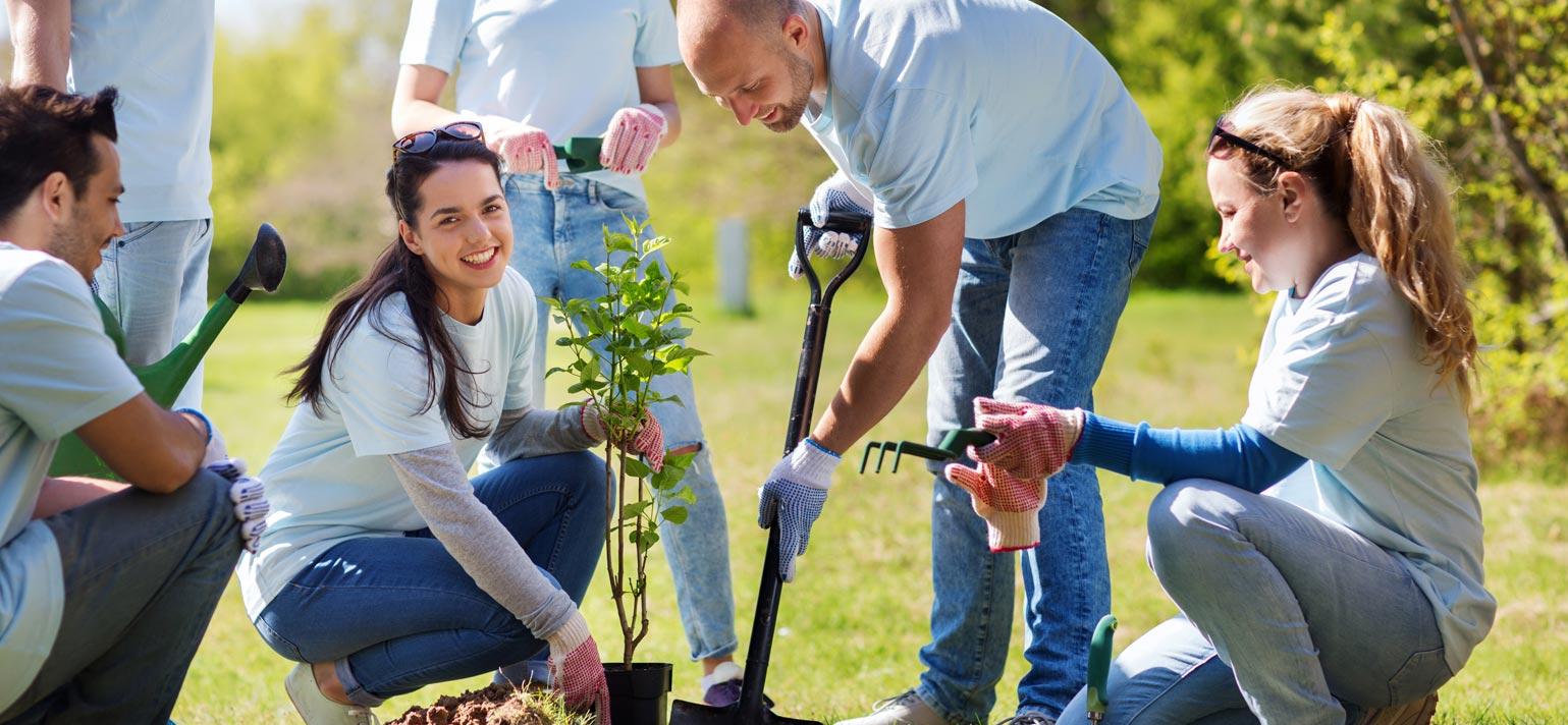 Tree Planting Jaswant Singh Khalra Park